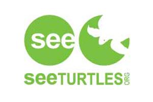 SeeTurtles