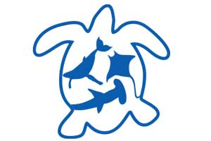 JUSTSEA_Logos