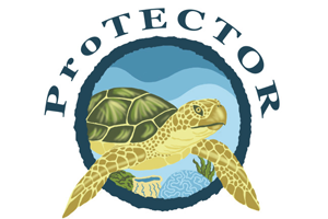 ProTECTOR_Logos