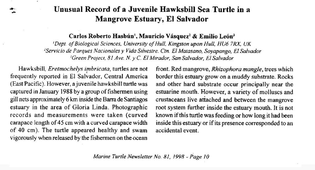 Hasbun et al. 1998