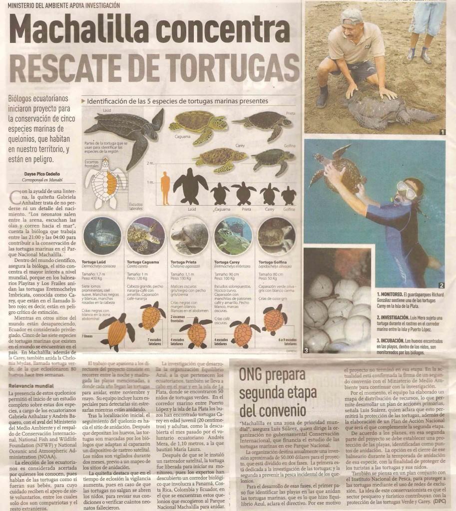 Hawksbill-conservation-Machalilla